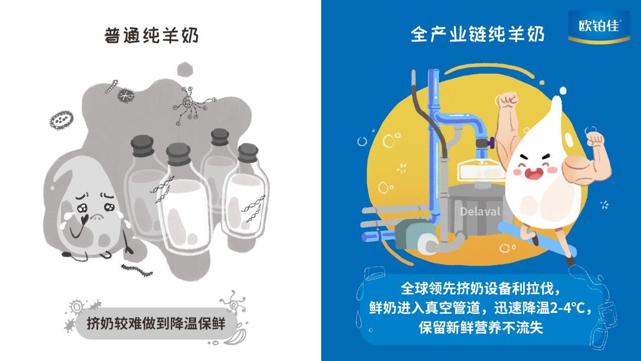 普通纯羊奶挤奶设备VS全产业链纯羊奶挤奶设备